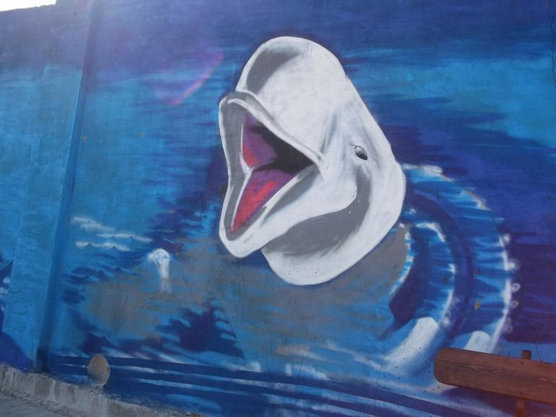В Большом Утрише, возле дельфинария