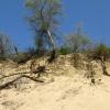 Анапа, дюны Джемете