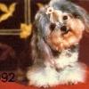 Календарик на 1992 год, изд. РИА «Юго-Запад».