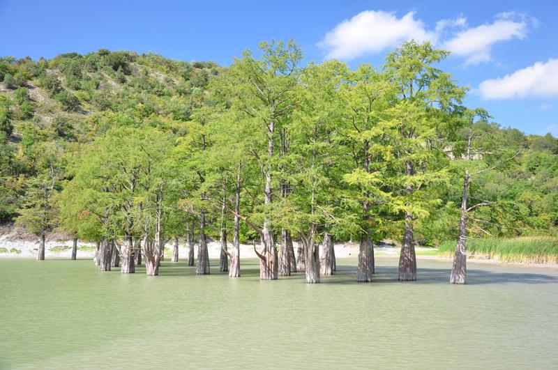 Кипарисы на горном озере в Сукко