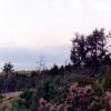 Дорога из Дивноморского в Джанхот