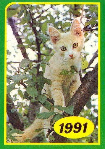 Календарик на1991 год, изд. «Панорама».