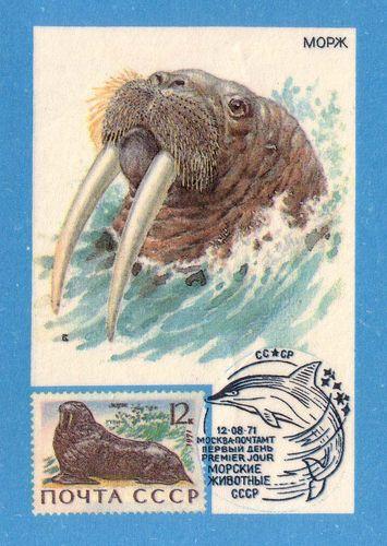Календарик на 1991 год, изд. «Союз филателистов СССР».