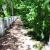 Калуга, аллея в Центральном парке