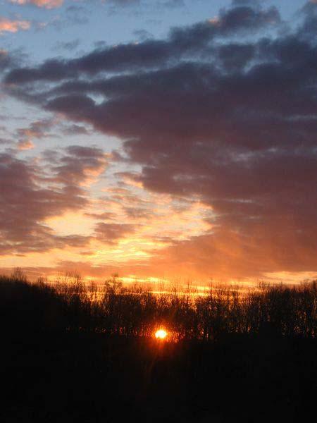 Краски утра