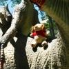 Хорватия, Дино-парк в Омише. Фотосессия Дружка