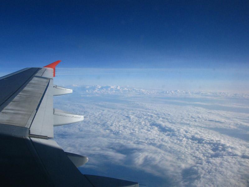 Вид из окна самолета, 10 ряд аэробуса 319